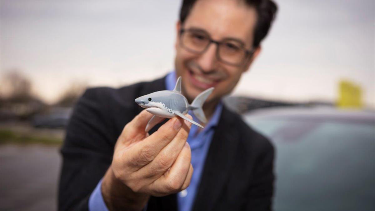 Opel Shark