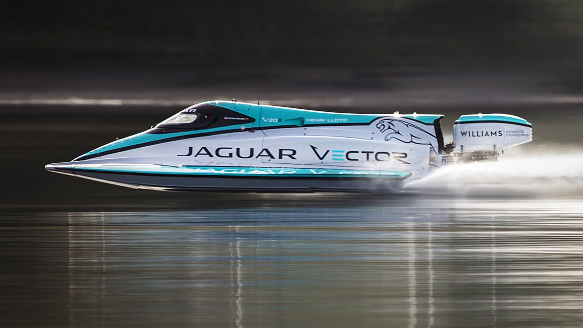 jaguar vector_01